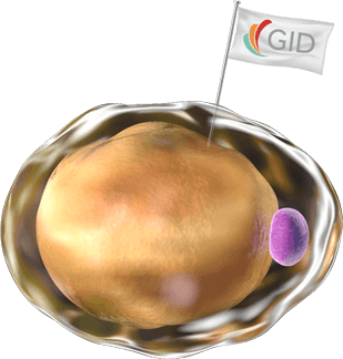 Cell with GID BIO flag